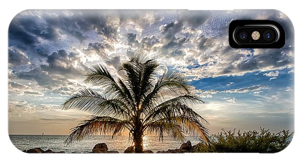 Key West Florida Lone Palm Tree  IPhone Case