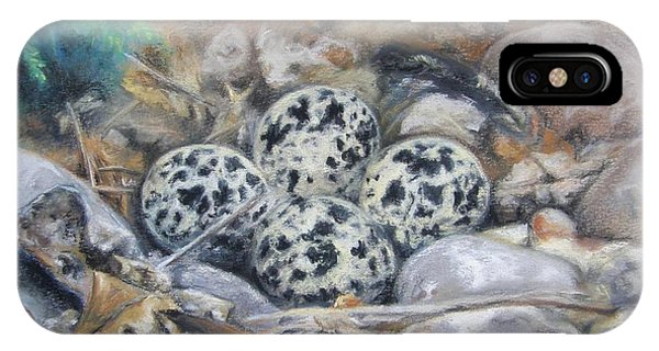 Killdeer Nest IPhone Case