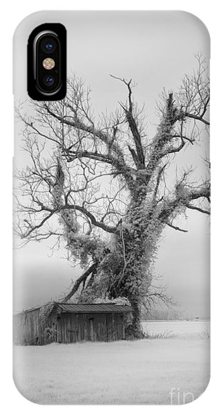 Killer Tree - Outer Banks IPhone Case