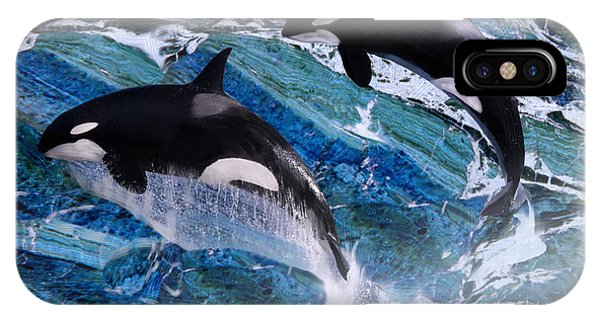 Wild Orca Whales Of Florida IPhone Case
