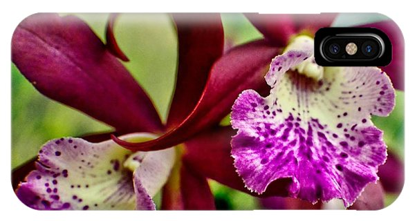 Kimball Orchids IPhone Case