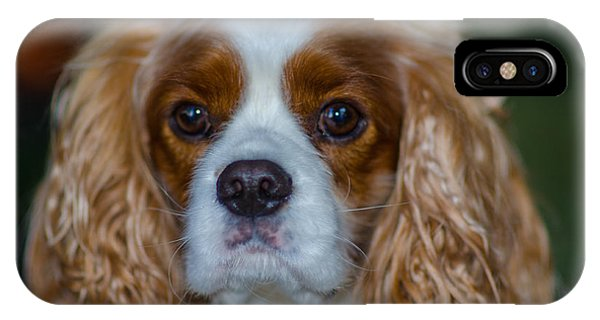 King Charles IPhone Case