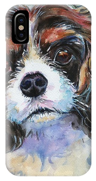 King Charles iPhone Case - King Charles Spaniel  by Maria Reichert