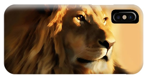 King Lion Of Africa IPhone Case
