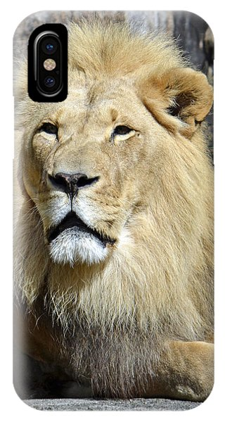 King Of Beasts IPhone Case