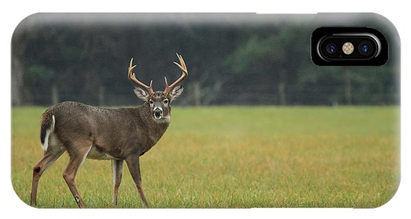 King Of The Field IPhone Case