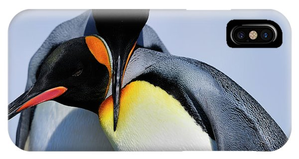 King Penguins Bonding IPhone Case