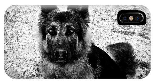 King Shepherd Dog - Monochrome  IPhone Case