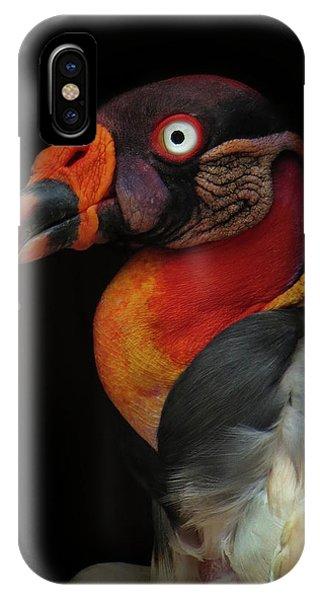 Condor iPhone Case - King Vulture-sarcoramphus Papa by Ferdinando Valverde