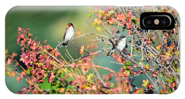 Kingbird Pair IPhone Case
