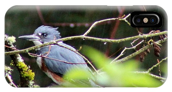 Kingfisher In The Rain IPhone Case