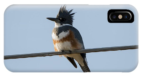 Kingfisher iPhone Case - Kingfisher Profile by Mike Dawson