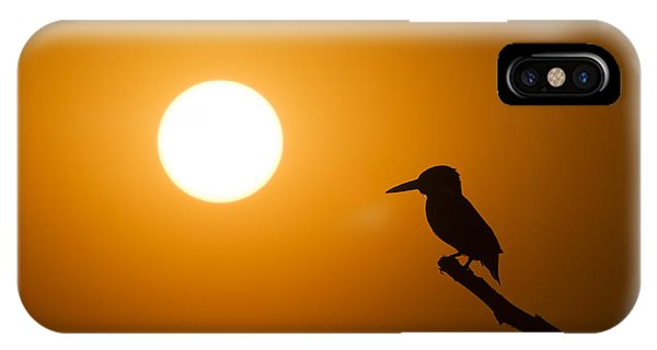 Kingfisher iPhone Case - Kingfisher Sunset by Tim Gainey