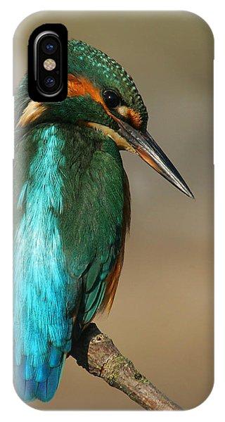 Kingfisher1 IPhone Case