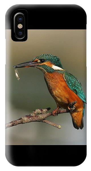 Kingfisher2 IPhone Case
