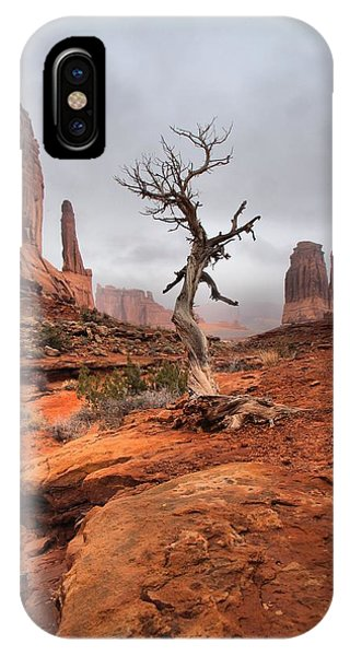 King's Tree IPhone Case