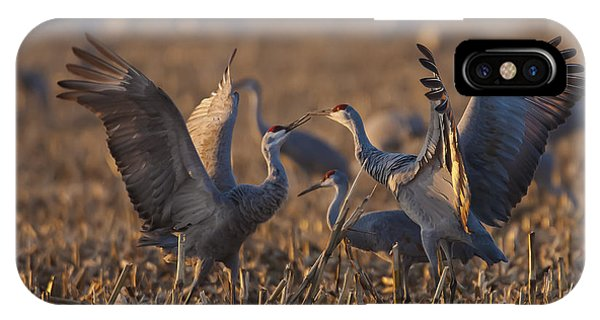 Kissing Sandhills IPhone Case