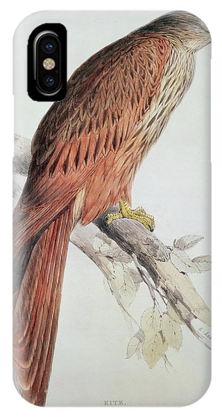 Audubon iPhone X Case - Kite by Edward Lear