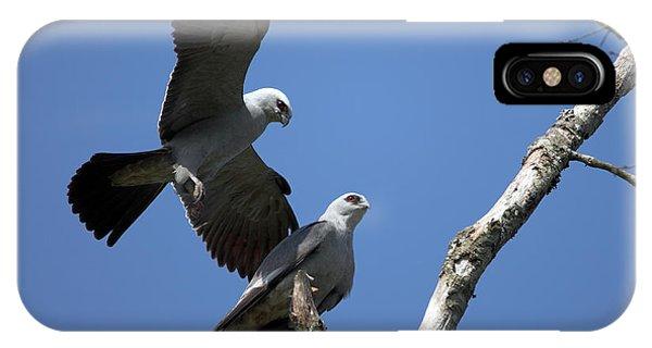 Kites In Love IPhone Case