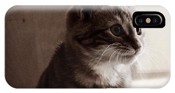 Kitten In The Light IPhone Case