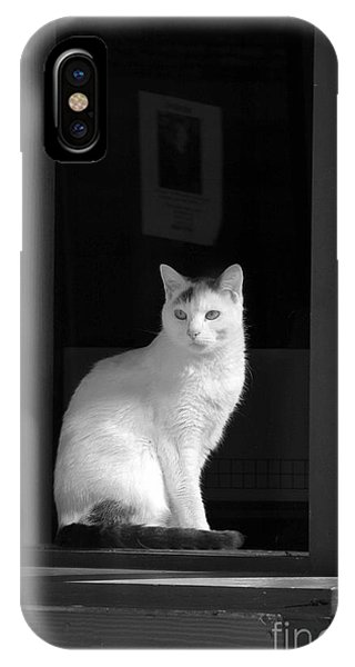Kitty In The Window IPhone Case