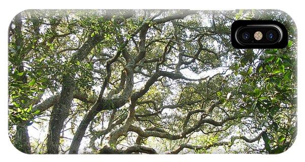 Knarly Oak IPhone Case