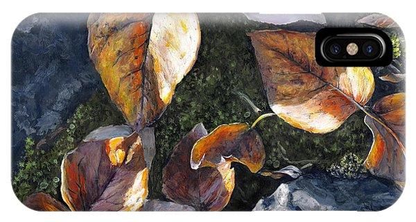 Knik River Autumn Leaves IPhone Case