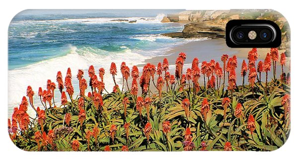 La Jolla Coast With Flowers Blooming IPhone Case