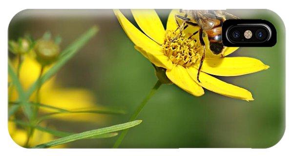 L'abeille IPhone Case