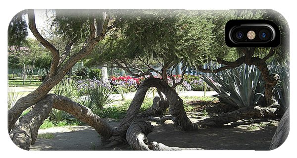 Labrea Tar Pit Trees Phone Case by Deborah Smolinske