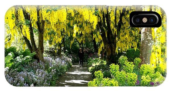 Laburnum Golden Chain Tree IPhone Case
