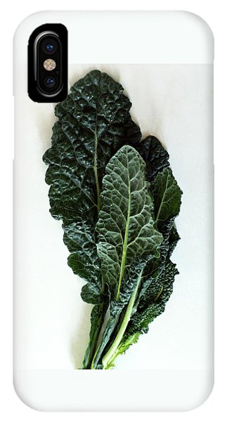 Lacinato Kale IPhone Case