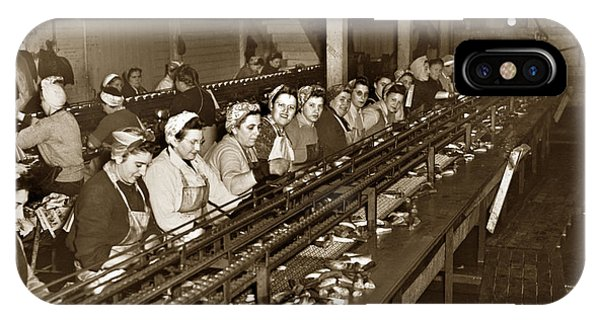 Ladies Packing Sardines In One Pound Oval Cans In One Of The Over 20 Cannery's Circa 1948 IPhone Case