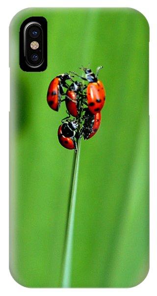 Lady Bug Social IPhone Case