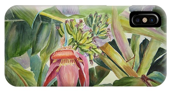 Lady Fingers - Banana Tree IPhone Case