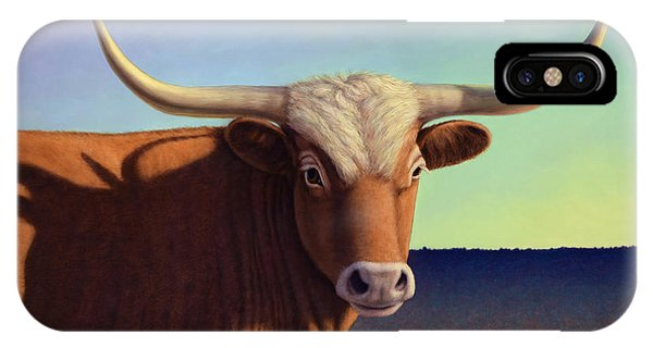 Bull iPhone Case - Lady Longhorn by James W Johnson