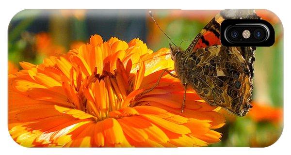 Lady On Orange IPhone Case