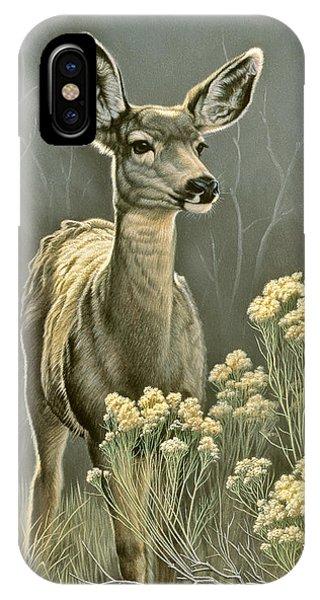 Mule Deer iPhone Case - Lady by Paul Krapf