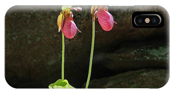 Lady Slippers At Moore State Park 5 IPhone Case