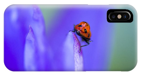 IPhone Case featuring the photograph Ladybug Adventure by Priya Ghose
