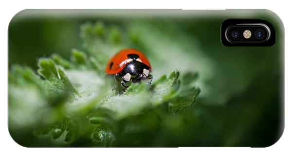 Ladybug On The Move IPhone Case