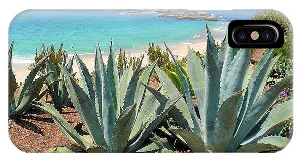 Laguna Coast With Cactus IPhone Case