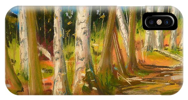 Lake Champlain Woods Phone Case by Valerie Lynch