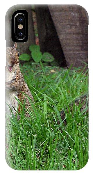 Lake Howard Squirrel 000 Phone Case by Chris Mercer