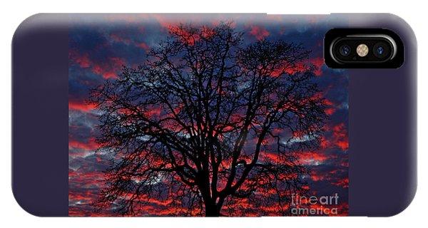 Lake Oswego Sunset IPhone Case