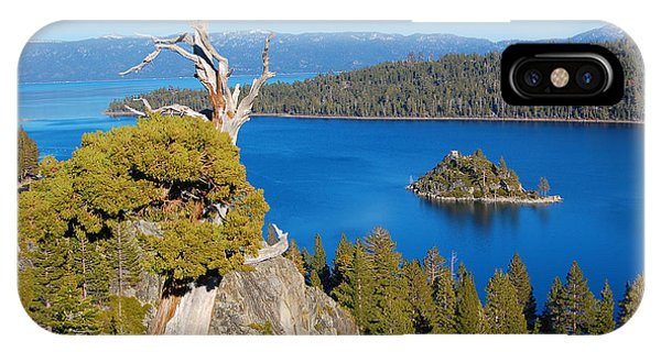 Lake Tahoe Reaching Tree IPhone Case