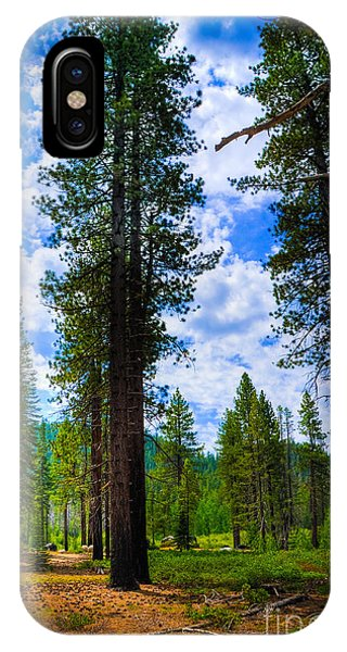 Lake Tahoe Trees IPhone Case