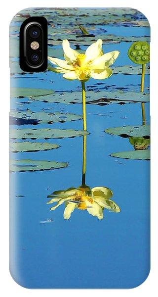 Lake Thomas Water Lily IPhone Case
