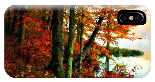 Fall Colors iPhone Case - Lakeside Beauty by Lianne Schneider