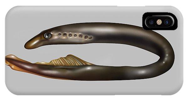 Lamprey Eel, Illustration IPhone Case